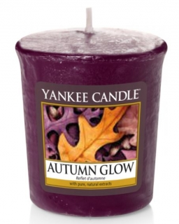 Yankee Candle Autumn Glow 49 g